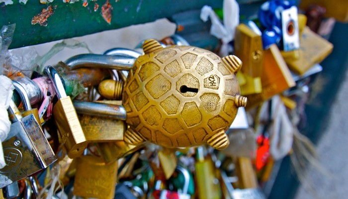 Turtle love lock on Pont de l'Archevêché bridge in Paris France