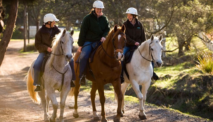 Country-Club-of-Tasmania-HorseRiding
